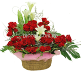 Flower Basket 31