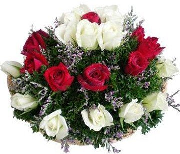http://www.bloom.com.my/MyMall/pic/bloom/item/FB5-b.JPG