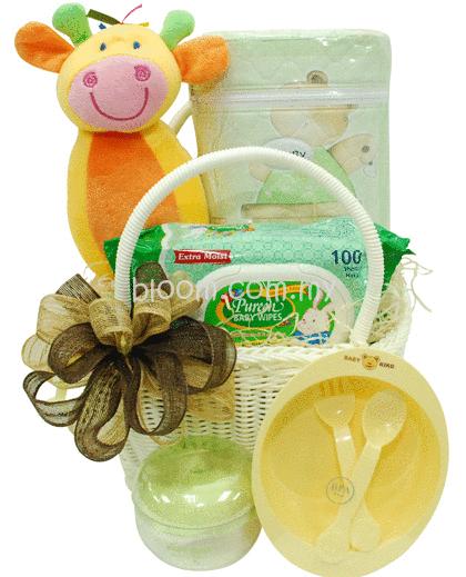 Baby Gift Delivery Kuala Lumpur : Flower manong bagan serai changkat jering
